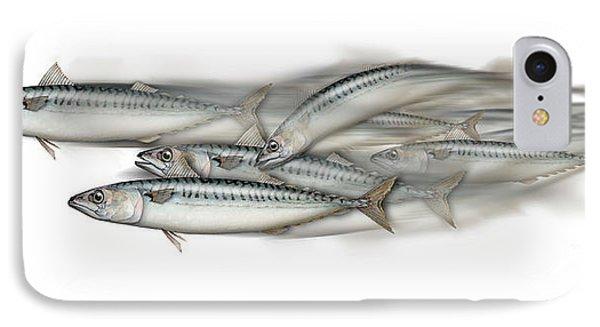 Mackerel School Of Fish - Scomber - Nautical Art - Seafood Art - Marine Art -game Fish IPhone Case