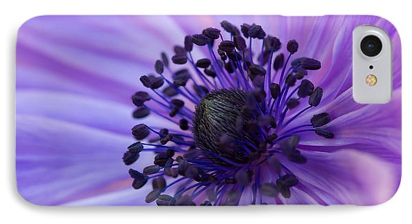 Macro Of Lavender Purple Anemone IPhone Case