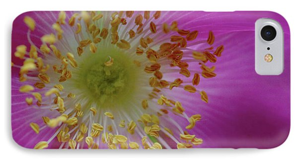 Macro Rosehip Bloom IPhone Case
