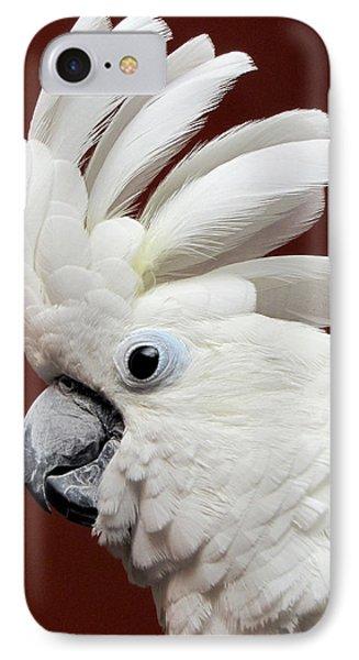 Maggie The Umbrella Cockatoo IPhone Case