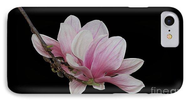 Magnolia #2 IPhone Case