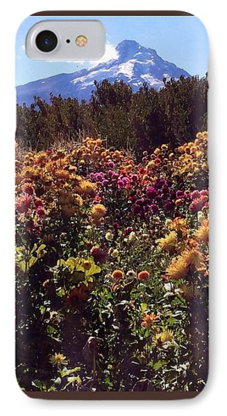 Majestic Mount Hood  IPhone Case