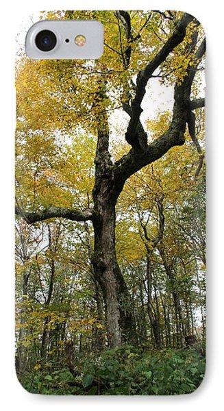 Majestic Tree IPhone Case