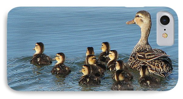 Make Way For Ducklings IPhone Case