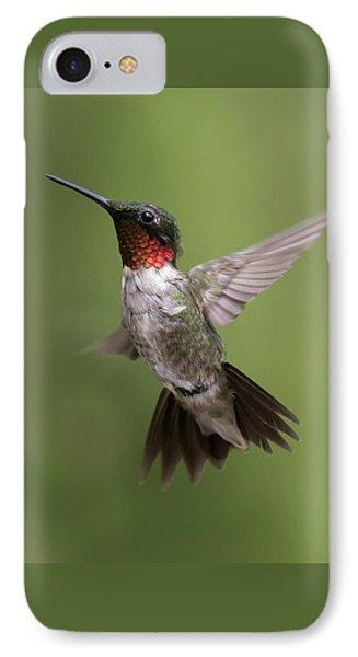 Male Ruby Throated Hummingbird IPhone Case