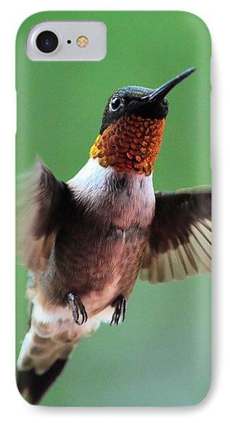 Male Ruby-throated Hummingbird IPhone Case