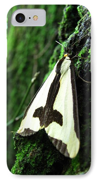 Maryland Clymene Moth IPhone Case