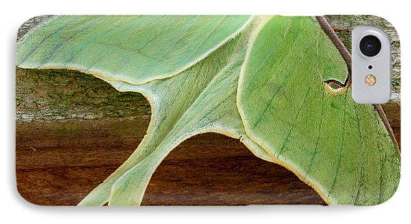 Maryland Luna Moth IPhone Case
