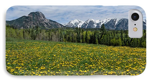 Meadow Of Dandelions In The San Juan Mountains IPhone Case
