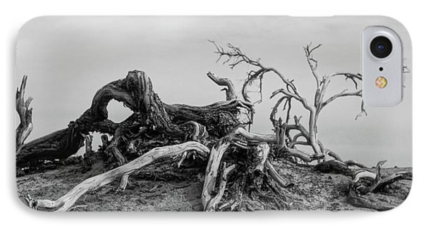 Mesquite Roots - Death Valley 2015 IPhone Case