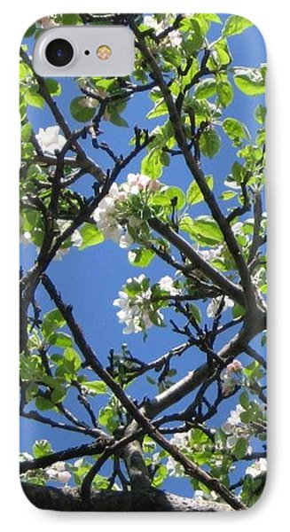 Mn Apple Blossoms IPhone Case