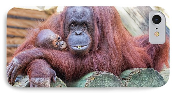 Mom And Baby Orangutan IPhone Case
