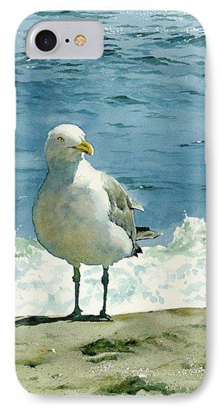 Beach iPhone 8 Case - Montauk Gull by Tom Hedderich