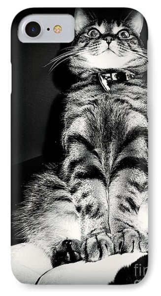 Monty Our Precious Cat IPhone Case