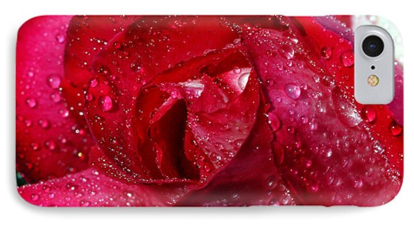 Morning Dew On Rose IPhone Case