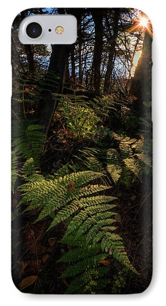 Morning On The Coastal Trail IPhone Case