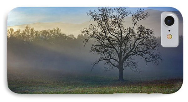 Morning Sunbeams In Cades Cove IPhone Case