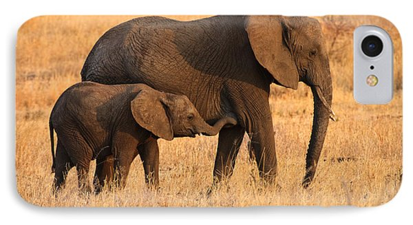 Mother And Baby Elephants IPhone Case