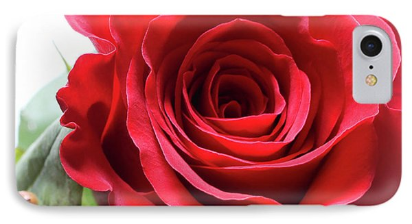 Mother's Day Rose IPhone Case