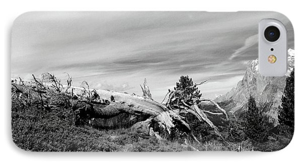 Mountain Landscape With Fallen Tree And View At Alps In Switzerland IPhone Case
