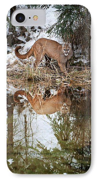 Mountain Lion Reflection IPhone Case