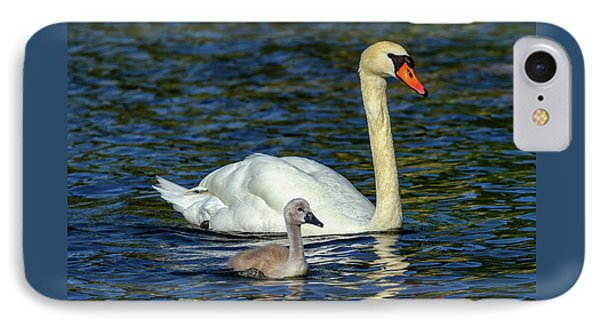 Mute Swan, Cygnus Olor, Mother And Baby IPhone Case