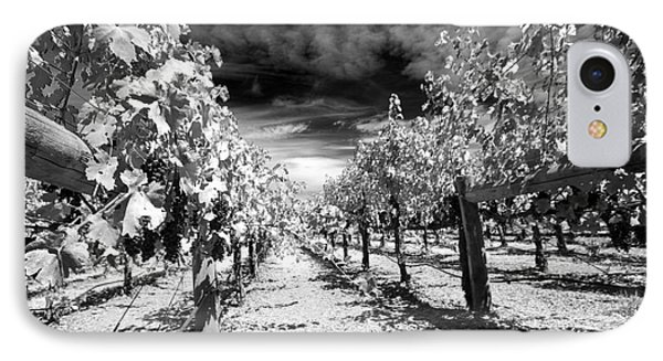 Napa Rows In Bw IPhone Case