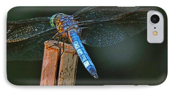 Nature's Jewel IPhone Case