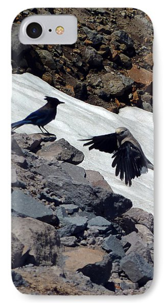 Neighbors At Crater Lake IPhone Case