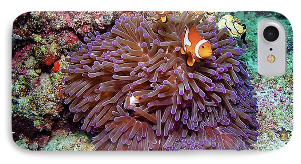 Nemo's Home IPhone Case