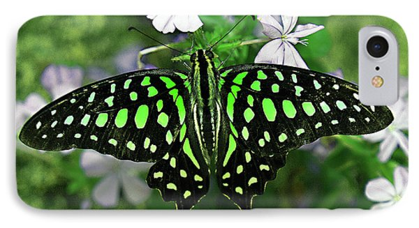 Neon --- Tailed Jay Butterfly IPhone Case