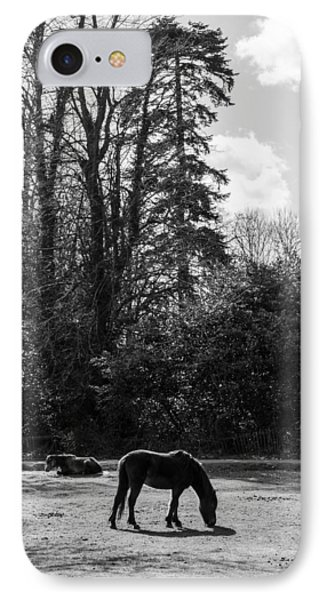 New Forest Silhouette IPhone Case