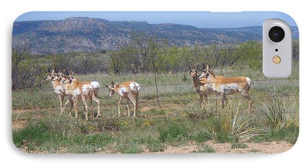 New Mexico Antelope 1 IPhone Case