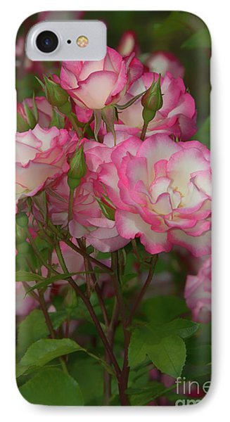 Nicole Roses IPhone Case