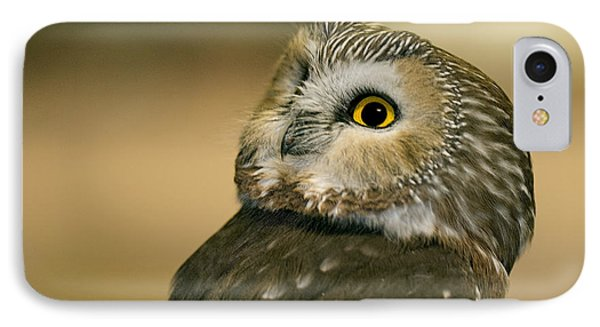 Northern Saw-whet Owl IPhone Case