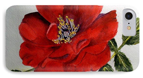 One Lone Wild Rose IPhone Case