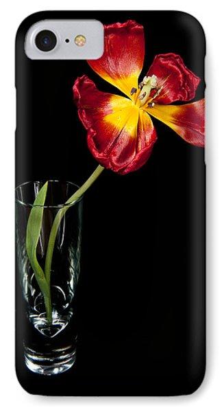 Open Red Tulip In Vase IPhone Case