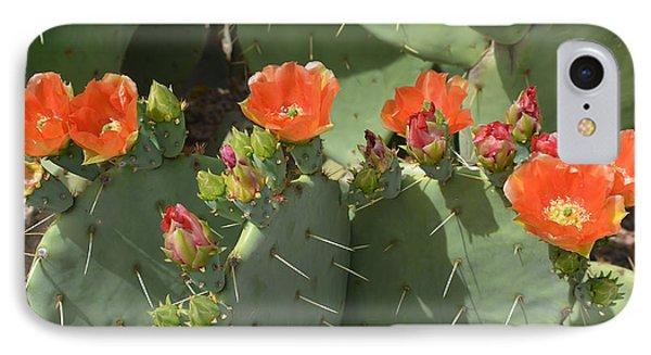 Orange Dream Cactus IPhone Case
