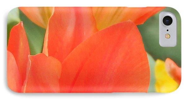 Orange Emperor Tulips IPhone Case