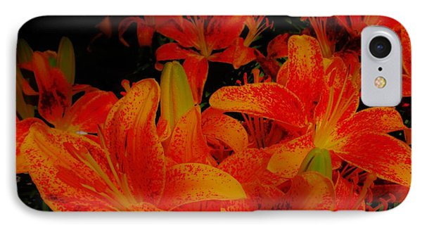 Spicey Tiger Lilies IPhone Case