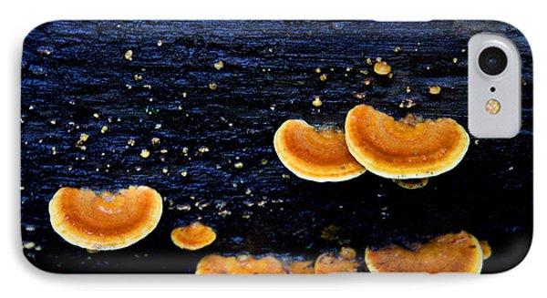 Orange Tree Fungus IPhone Case