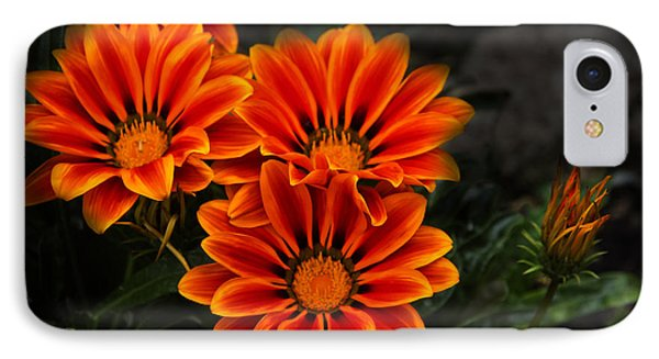Orange You Glad II IPhone Case