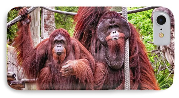 Orangutan Couple IPhone Case
