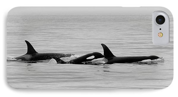 Orcas Bw IPhone Case