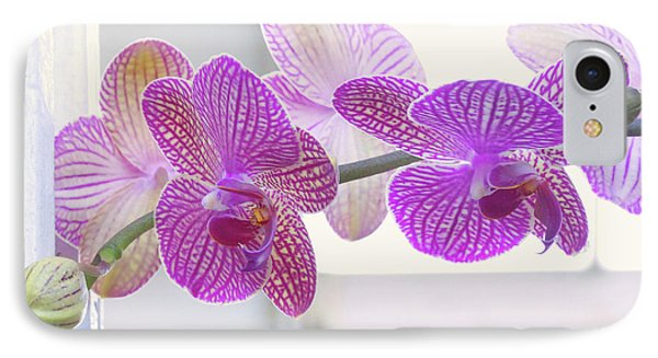 Orchid Spray IPhone Case