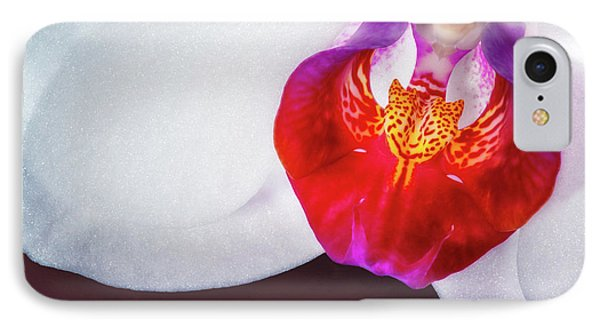 Orchid iPhone 8 Case - Orchid Up Close by Tom Mc Nemar
