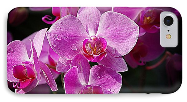 Orchids 4 IPhone Case