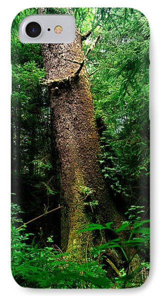 Oregon - Ecola State Park 3 IPhone Case