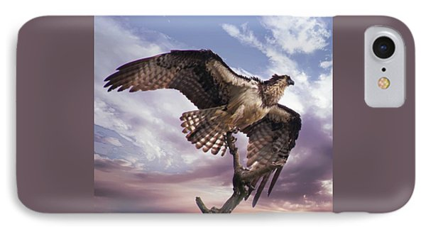 Osprey Wing IPhone Case