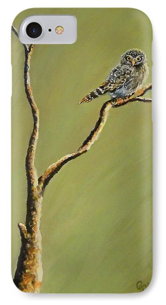 Owl On A Branch IPhone Case
